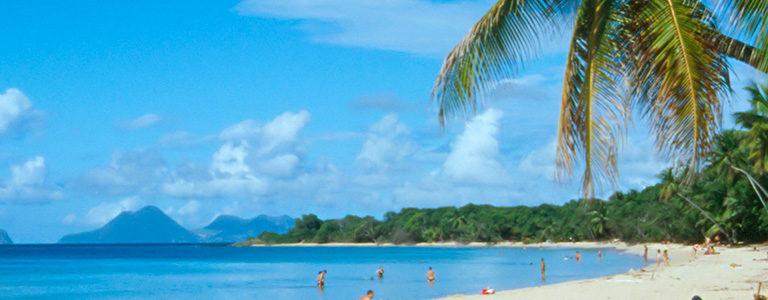 Visitez la Martinique en famille grâce à la location de voitures, c'est pratique